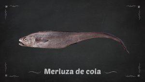 Merluza de cola