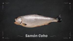 Salmón Coho